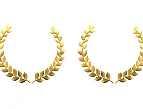 2020 Awards & Accolades Round-Up
